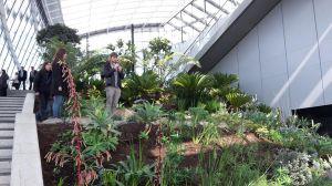 Sky Garden4