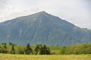 Zug 2015 048