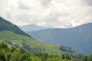 Zug 2015 049