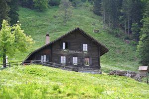 Zug 2015 063